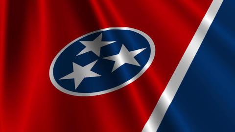 Tennessee Flag Loop 03 Stock Video Footage