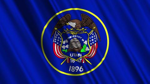 Utah Flag Loop 01 Stock Video Footage