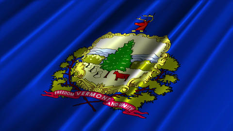 Vermont Flag Loop 02 Stock Video Footage