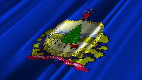 Vermont Flag Loop 02 Stock Video Footage