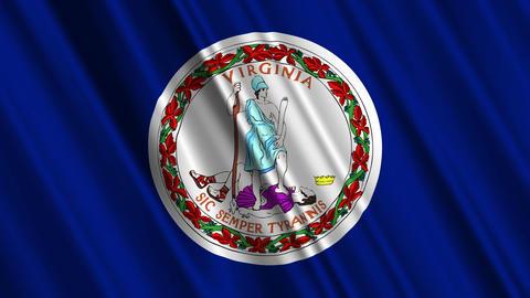Virginia Flag Loop 01 Stock Video Footage