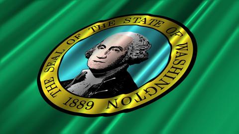 Washington Flag Loop 02 Stock Video Footage