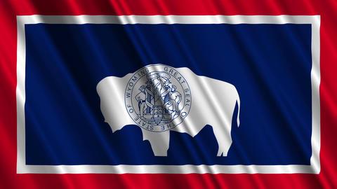 Wyoming Flag Loop 01 Stock Video Footage
