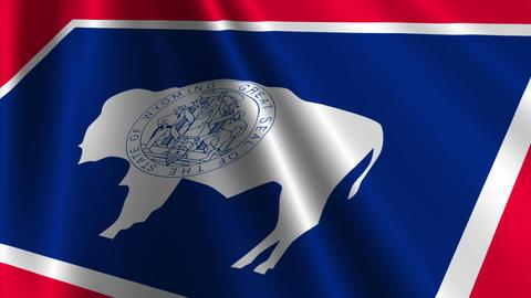Wyoming Flag Loop 03 Animation