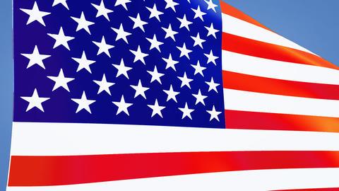 USA Flags 0