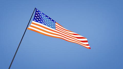 USA Flags 1
