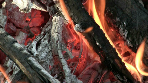 Camp Fire Macro Footage