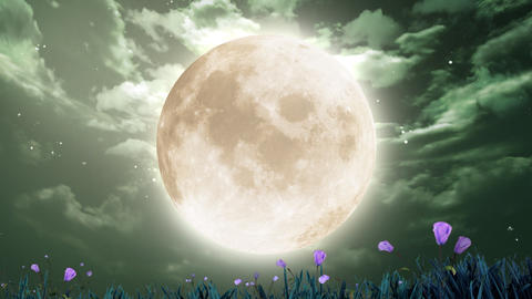 large moon and flowers Stock Video Footage