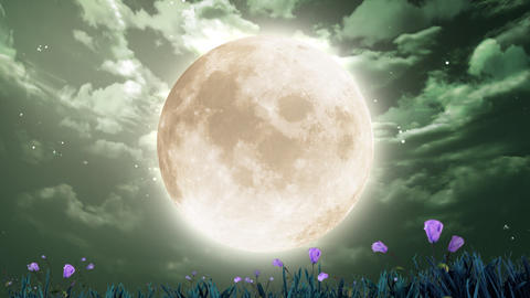 large moon and flowers Animation