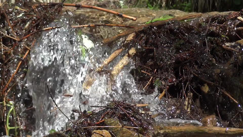 Mountain spring water 07 Footage