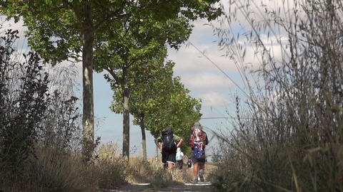 Pilgrim on the Camino de Santiago 12 (2) Footage