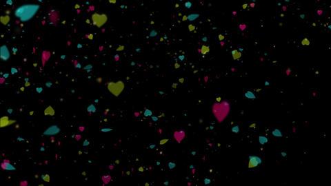 hart 22 動画素材, ムービー映像素材