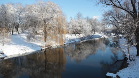 Winter landscape with the trees which are reflected in water Footage