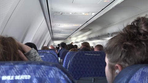 Seated in The Back of The Airplane Live Action