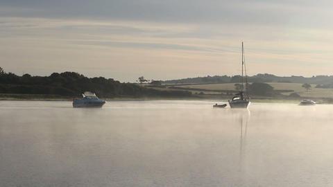 Morning Mist stock footage