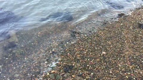 Lapping Shore stock footage