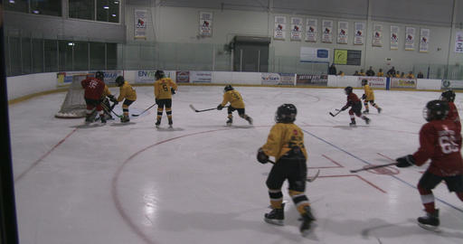 Kids playing hockey Live Action