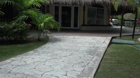 Tropical Lounge Palapa Center - Tilt Up Footage