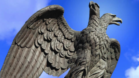 Double headed eagle spreads its wings Footage