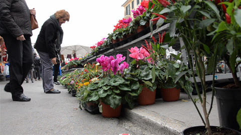 People at plant market place Footage