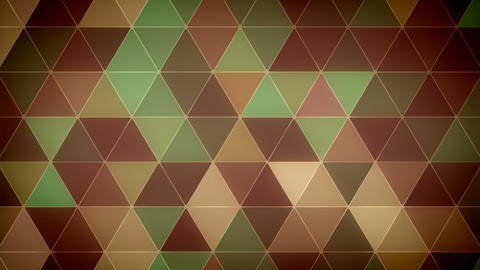 Triangle Polygon Loop 11 Forest Animation