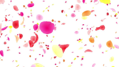 Flower petals pink tornado Dw 4 K CG動画
