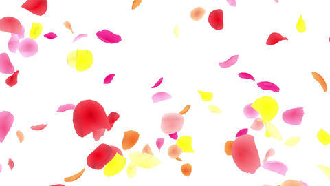 Flower petals pink tornado Gw 4 K Animation