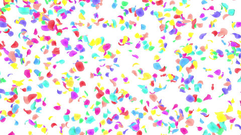 Flower petals rainbow falling A 4 K Animation