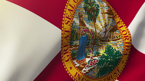 Florida flag waving in the wind. Looping sun rises style. Animation loop Animation