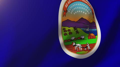 Kansas flag waving in the wind. Looping sun rises style. Animation loop Animation