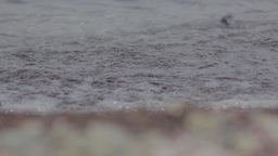 Waves Over Sand stock footage
