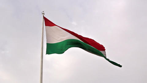 Tajikistan flag. Dushanbe, Tajikistan Footage