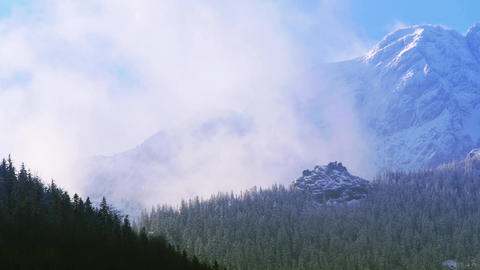 Mountain Surrounded By Forest And Clouds stock footage