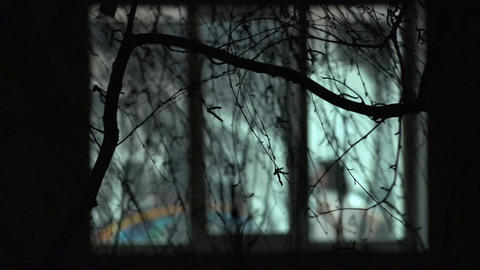 Dancing Blurred Silhouettes in Window through Branches of Tree. 4K UltraHD, UHD Footage