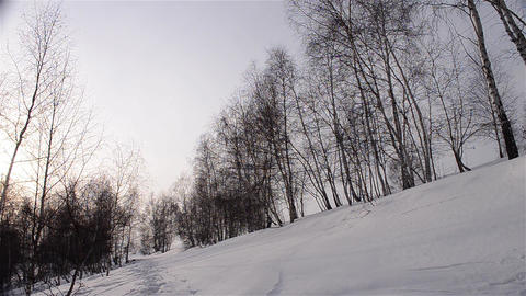 Winter landscapes 1a Stock Video Footage