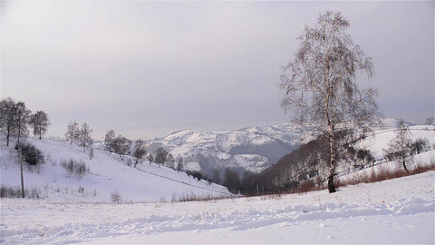 Winter landscapes 1c Stock Video Footage