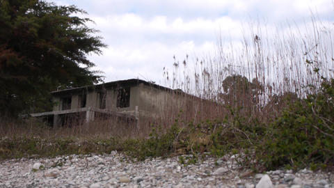 Abandoned Building in Bush 1 Stock Video Footage
