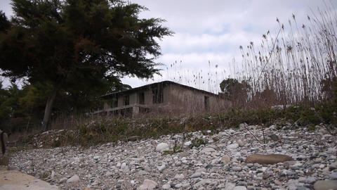 Abandoned Building in Bush 2 Stock Video Footage