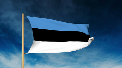 Estonia flag slider style. Waving in the wind with cloud... Stock Video Footage