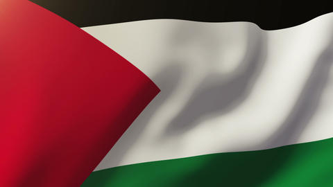 Palestine flag waving in the wind. Looping sun rises style. Animation loop Animation