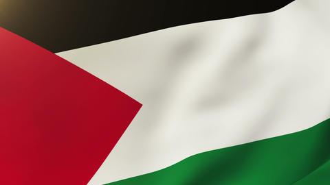 Palestine flag waving in the wind. Looping sun rises... Stock Video Footage