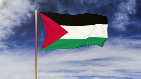 Palestine flag waving in the wind. Green screen, alpha... Stock Video Footage