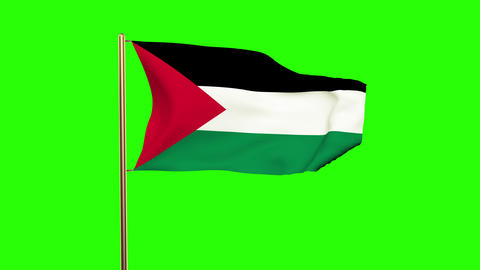 Palestine flag waving in the wind. Green screen, alpha matte. Loopable animation Animation