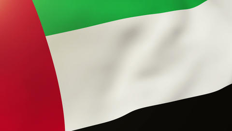 United Arab Emirates flag waving in the wind. Looping sun... Stock Video Footage