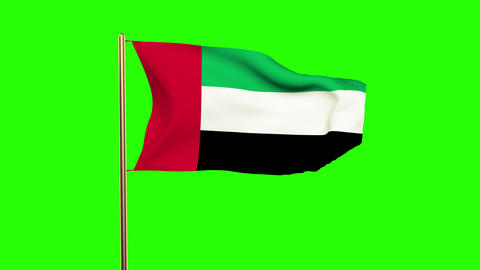 United Arab Emirates flag waving in the wind. Green screen, alpha matte. Loopabl Animation
