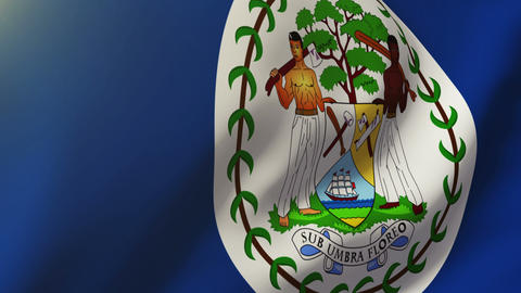 Belize flag waving in the wind. Looping sun rises style. Animation loop Animation