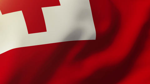Tonga flag waving in the wind. Looping sun rises style. Animation loop Animation