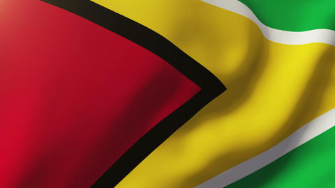 Guyana flag waving in the wind. Looping sun rises style. Animation loop Animation
