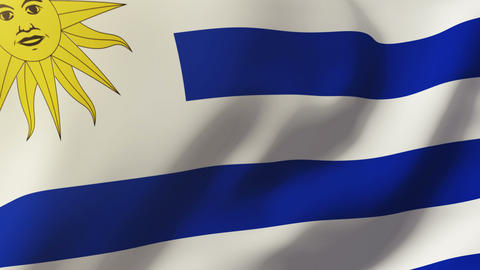 Uruguay flag waving in the wind. Looping sun rises style. Animation loop Animation