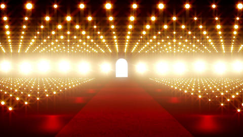 On The Red Carpet 02 Stock Video Footage